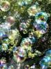Псковский праздник мыльных пузырей состоится 19 и 20 мая