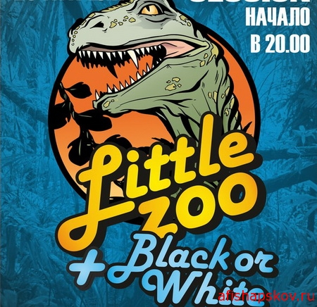 Little zoo + Black or white