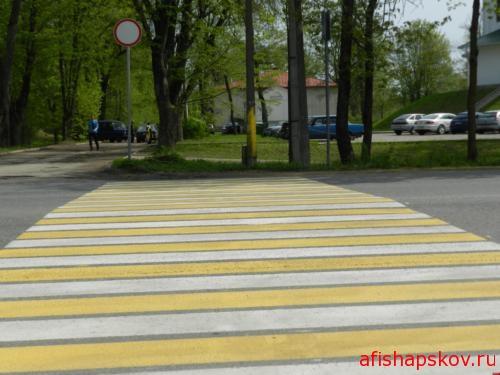 На каких улицах Пскова появится разметка к 30 июля. СПИСОК