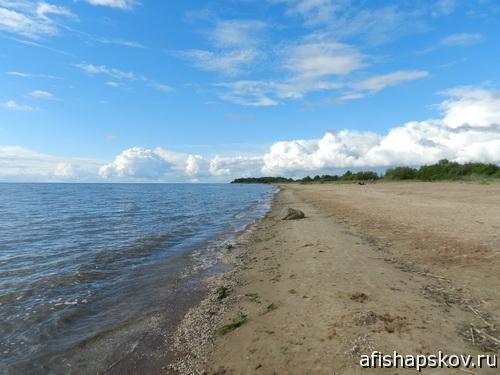 Пляжи псковской области