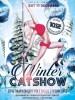 Наисложнейшие номера на пилоне, акробатика на воздушных полотнах и кольце — в Пскове сегодня состоится зимний отчётный концерт студии Cats