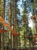 Верёвочный парк в Мальской долине откроет сезон 6 мая