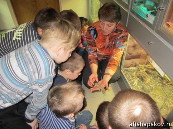 Эколого-биологический центр Псков