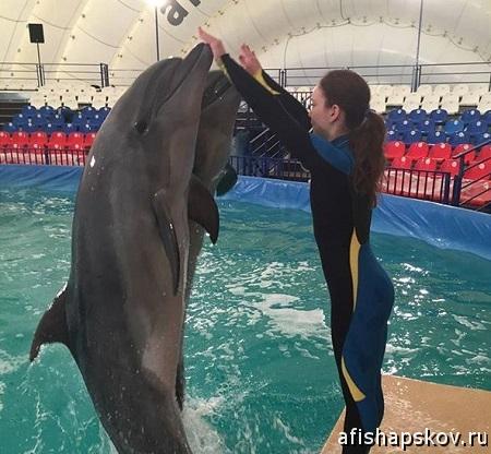 Дельфинарий Псков 2018
