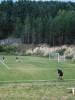 Многообразие футбольного ландшафта страны покажут на фотовыставке в Пскове